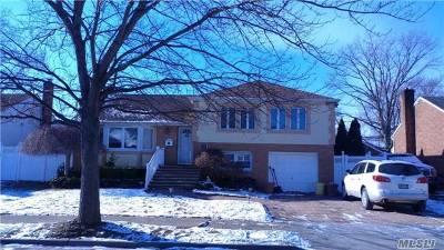 Farmingdale, Hicksville, Levittown, Massapequa, Massapequa Park, N. Massapequa, Plainview, Syosset, Westbury Single Family Home For Sale: 100 Kathleen Dr