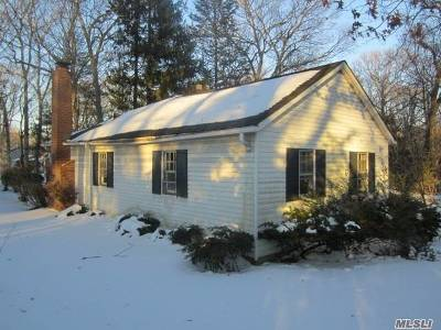 Lake Grove Single Family Home For Sale: 15 Jefferson St