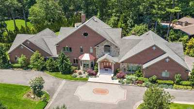 Syosset Single Family Home For Sale: 21 Cherry Lane East