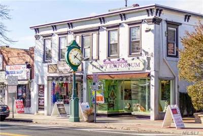 Sayville Commercial For Sale: 15 Main St