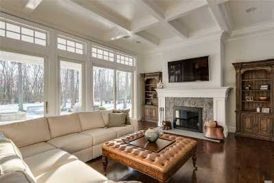 Nassau County Single Family Home For Sale: 22 Overlook Dr