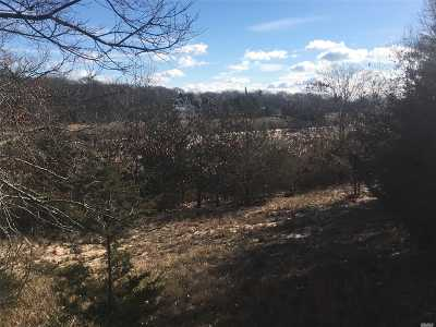 Remsenburg Residential Lots & Land For Sale: 12 Mill Rd