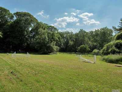 Nassau County Residential Lots & Land For Sale: 263 Store Hill Rd