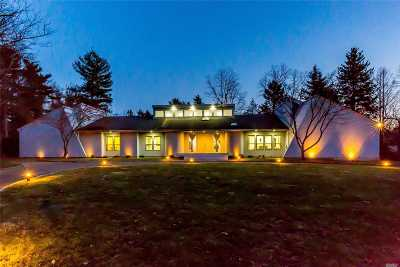 Nassau County Single Family Home For Sale: 14 Amber Ln