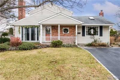 Syosset Single Family Home For Sale: 6 Georgia Dr