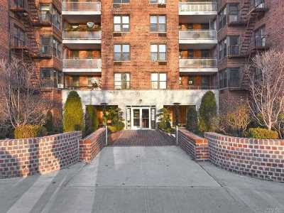 Brooklyn Condo/Townhouse For Sale: 9511 Shore Rd #209