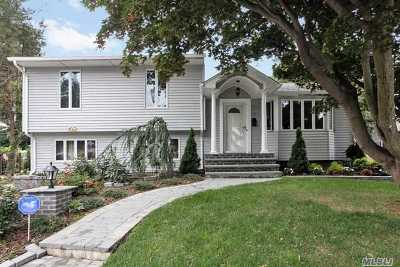 Syosset Single Family Home For Sale: 38 Pickwick Dr