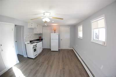 Huntington Sta NY Rental For Rent: $1,495