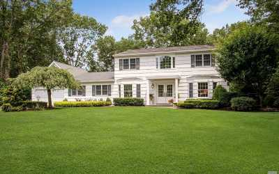 Smithtown Single Family Home For Sale: 66 Leslie Ln