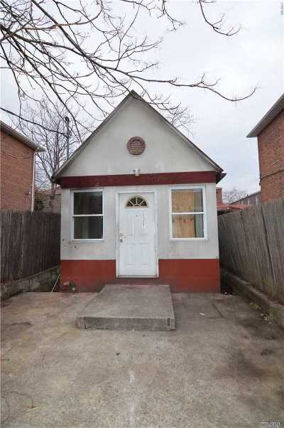 Brooklyn Single Family Home For Sale: 1327 E 87th St
