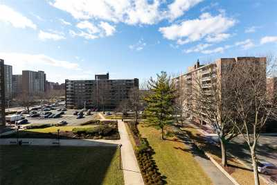 Brooklyn Condo/Townhouse For Sale: 200 Cozine Ave #5L