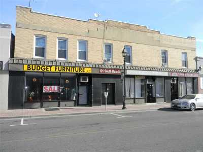 Freeport Commercial For Sale: 119-123 S Main St