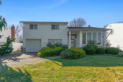 East Meadow Single Family Home For Sale: 325 Old Westbury Rd