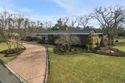 Hewlett Single Family Home For Sale: 23 Willow Pond Ln