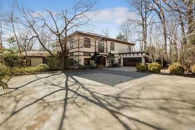 Great Neck Single Family Home For Sale: 5 Cherry Ln