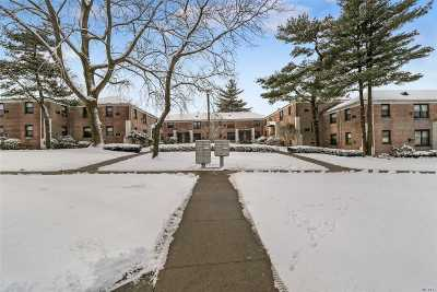Co-op For Sale: 5 West Mill Dr #1B