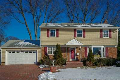 Syosset Single Family Home For Sale: 25 Lesley Dr
