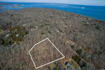 East Hampton Residential Lots & Land For Sale: 38 Robins Way