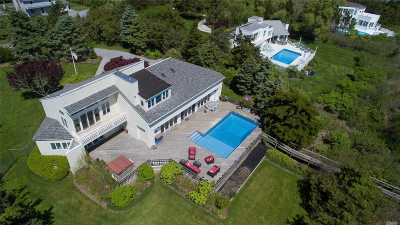 Westhampton Single Family Home For Sale: 14 Tanners Neck Ln