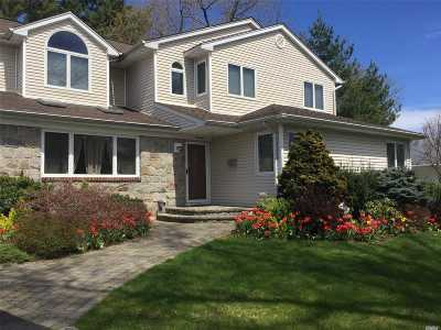Jericho Single Family Home For Sale: 19 Marian Ln