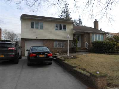 Garden City Single Family Home For Sale: 65 Russell Rd