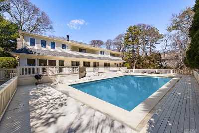 Westhampton Single Family Home For Sale: 23 Fiddler Crab Trl