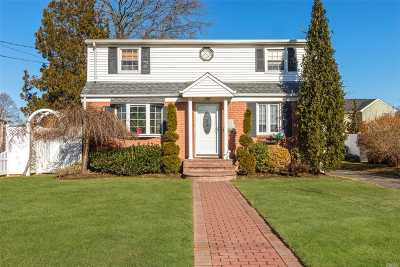 East Meadow Single Family Home For Sale: 527 Patterson St