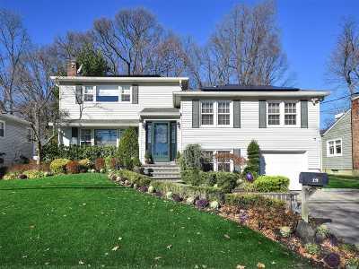 Port Washington Single Family Home For Sale: 19 Morewood Oaks