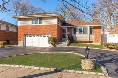Syosset Single Family Home For Sale: 10 Stuart Dr