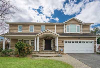 Jericho Single Family Home For Sale: 59 Chenango Dr