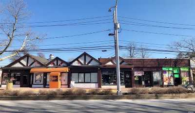 Great Neck Commercial For Sale: 597-607 Middle Neck Rd