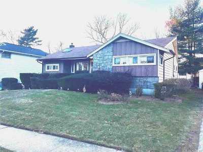 East Meadow Single Family Home For Sale: 1439 Dieman Ln