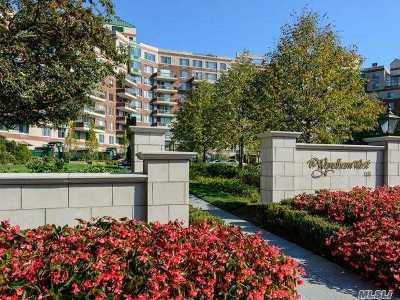 Garden City Condo/Townhouse For Sale: 111 Cherry Valley Ave #607