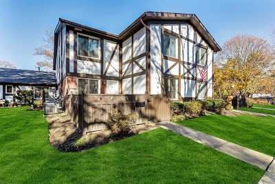 Medford Condo/Townhouse For Sale: 427 Birchwood Rd