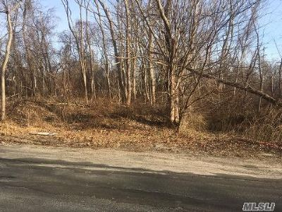 Peconic Residential Lots & Land For Sale: 1330 Henrys Ln