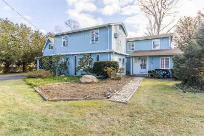 Patchogue Single Family Home For Sale: 132 Marvin St