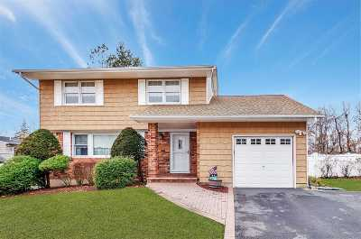 Smithtown Single Family Home For Sale: 94 Arthur Dr