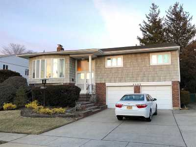 Baldwin Single Family Home For Sale: 3385 Bertha Dr