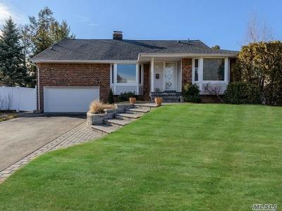 Jericho Single Family Home For Sale: 227 Birchwood Park Dr