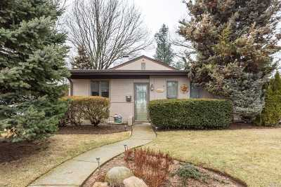 East Meadow Single Family Home For Sale: 402 Argyle Rd