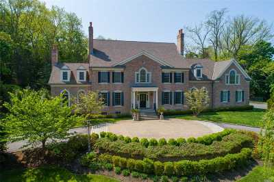 Suffolk County Single Family Home For Sale: 19 Plover Ln