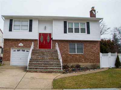 Single Family Home For Sale: 1679 Lewis Rd