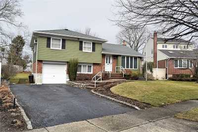 Syosset Single Family Home For Sale: 6 Loretta Dr