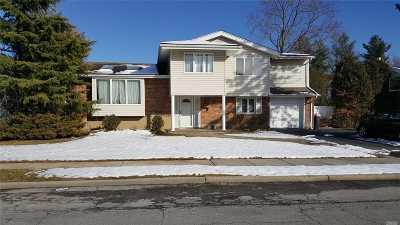 Jericho Single Family Home For Sale: 18 Warren Ln