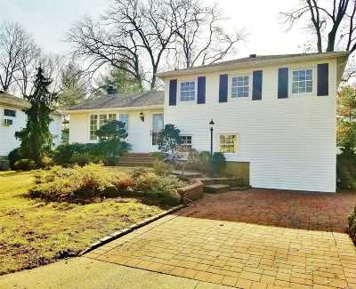 Nassau County Single Family Home For Sale: 115 Roy St