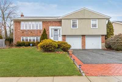 Jericho Single Family Home For Sale: 252 Ellen Pl