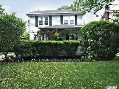 Rockville Centre Single Family Home For Sale: 233 Raymond St