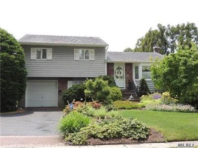 East Meadow Single Family Home For Sale: 633 Berfond Pl