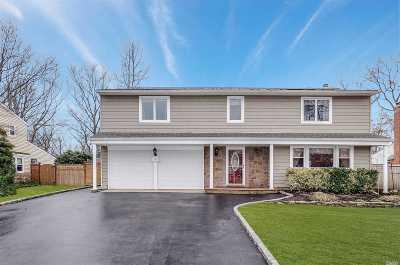 Lake Grove Single Family Home For Sale: 10 Kristi Ln