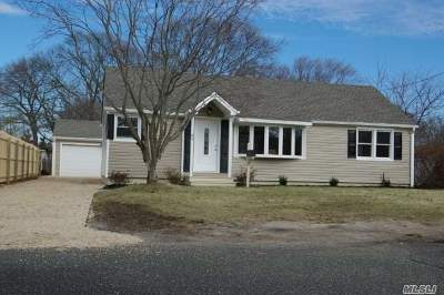Bay Shore Single Family Home For Sale: 65 Chenango Dr